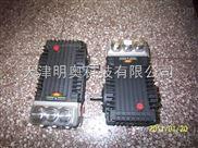 意大利英特Interpump高压泵W425